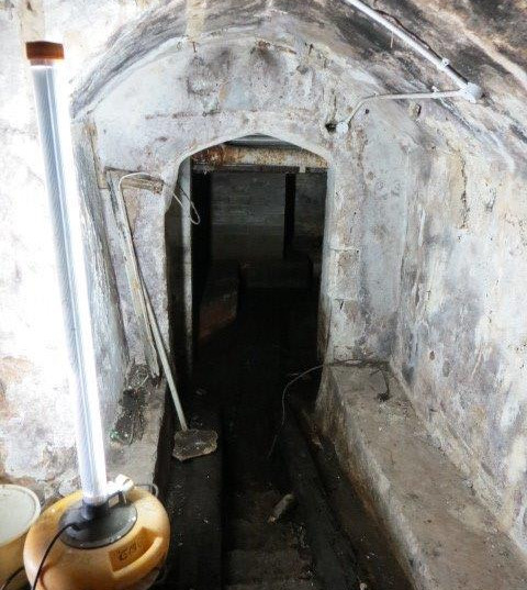 The Cellar prior to renovation.