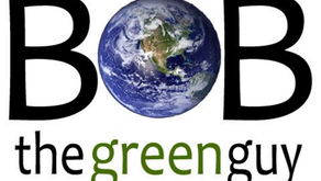 WHAT DOES A 100% RENEWABLE FUTURE LOOK LIKE?