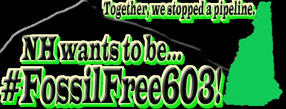 FF603NH