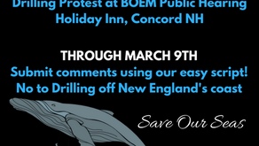 Protest/Hearing/Commenting against Offshore Drilling in the Gulf of Maine
