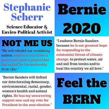 Endorse Bernie Sanders 2020.png