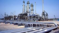 shedgum-gas-plant-6-l
