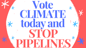 ✓ Your vote today can stop pipelines!
