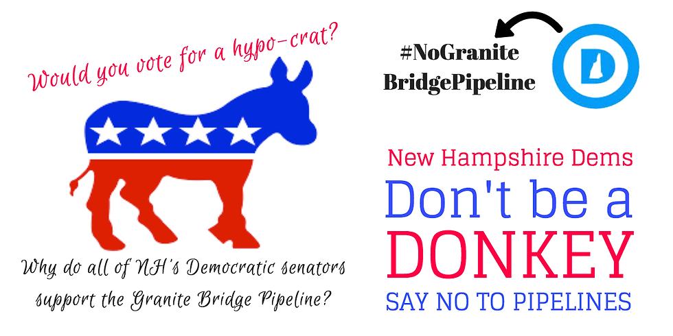 NH Democratic Convention Demonstration: Say No To Granite Bridge