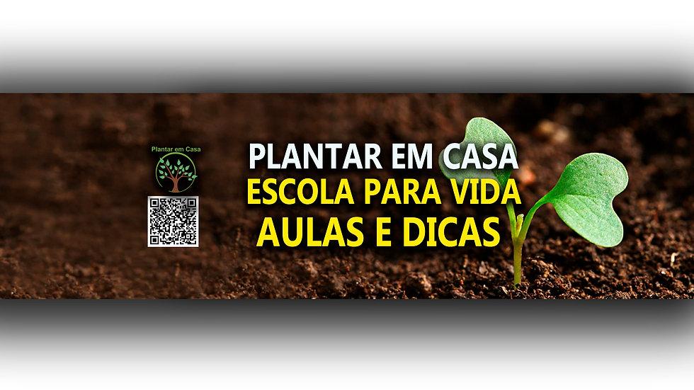PLANTAR EM CASA YOUTUBE.jpg