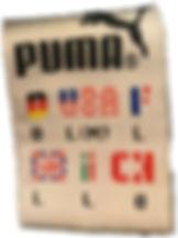 puma2.jpg