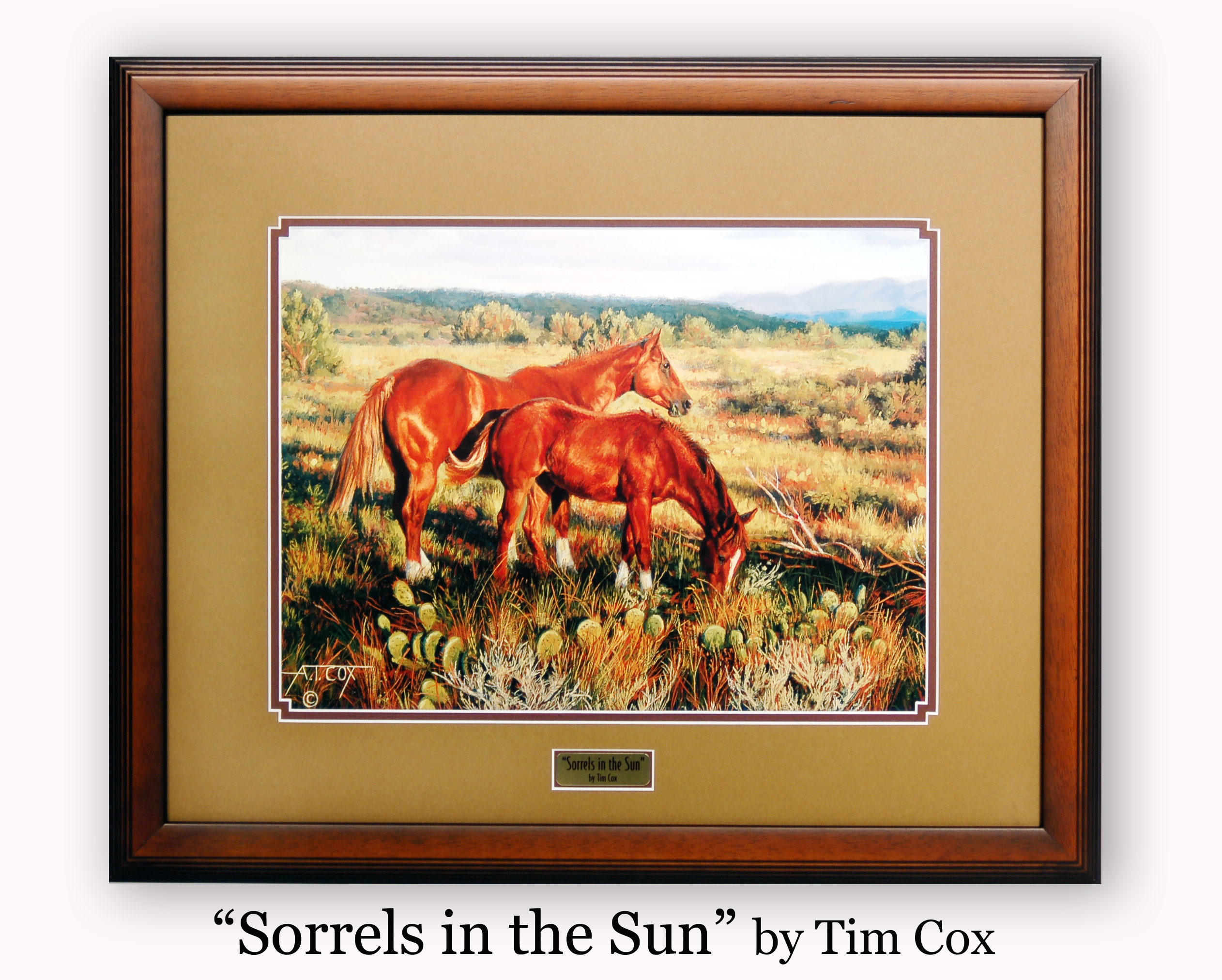 """Sorrels in the Sun by Tim Cox"