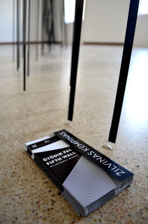 Žilvinas Kempinas exhibition design