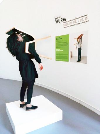 Erwin Wurm exhibition