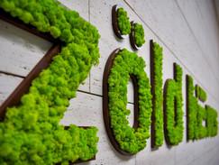 Café Green Handle