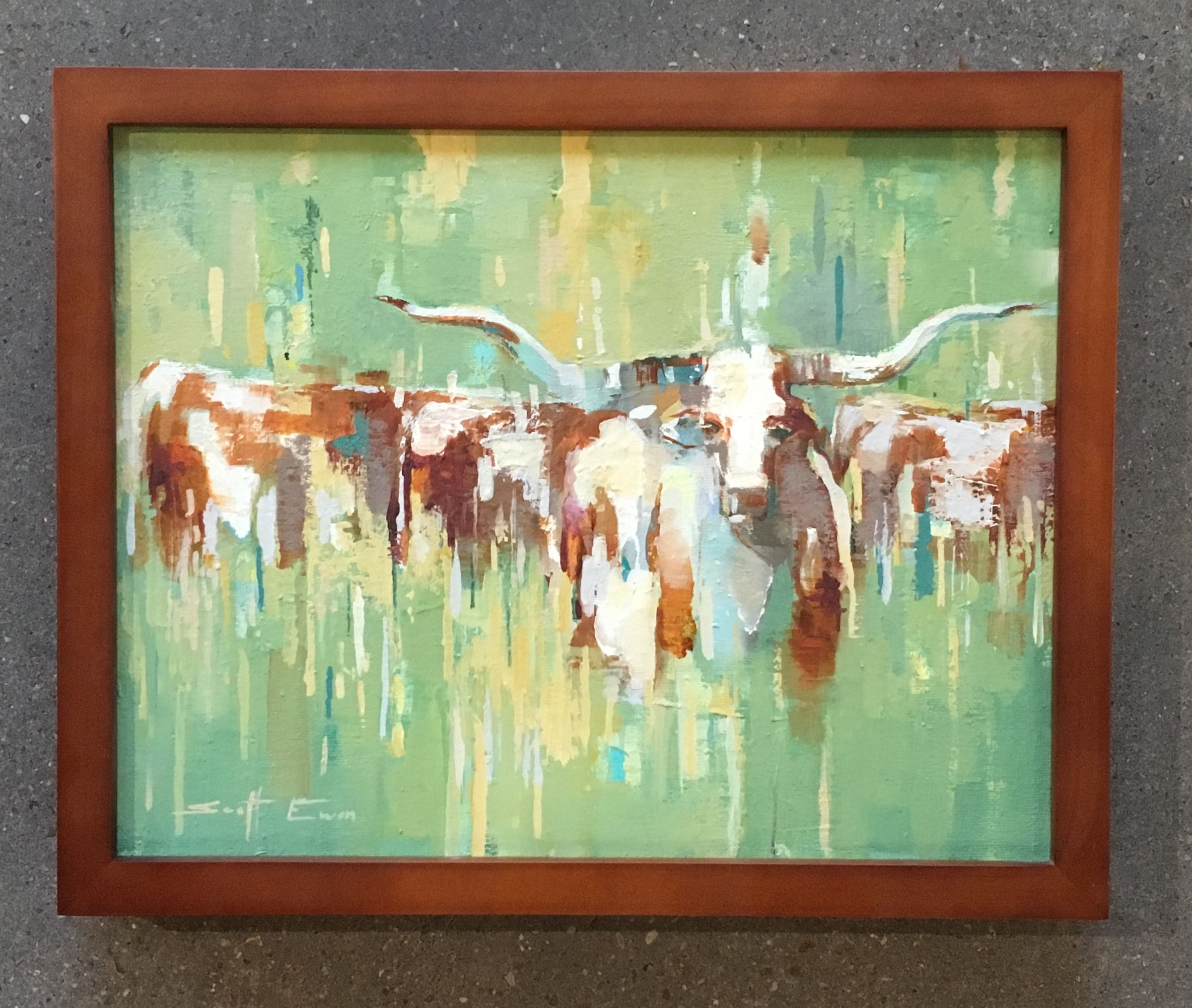 Longhorns in a Field