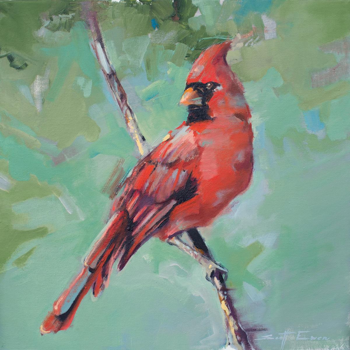 Jamie's Cardinal