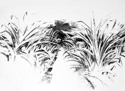 Charcoal Landscape 8