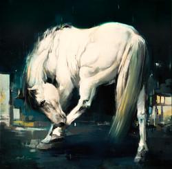 Caravaggio's Horse