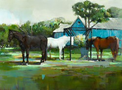 horse-painting-scott-ewen-15
