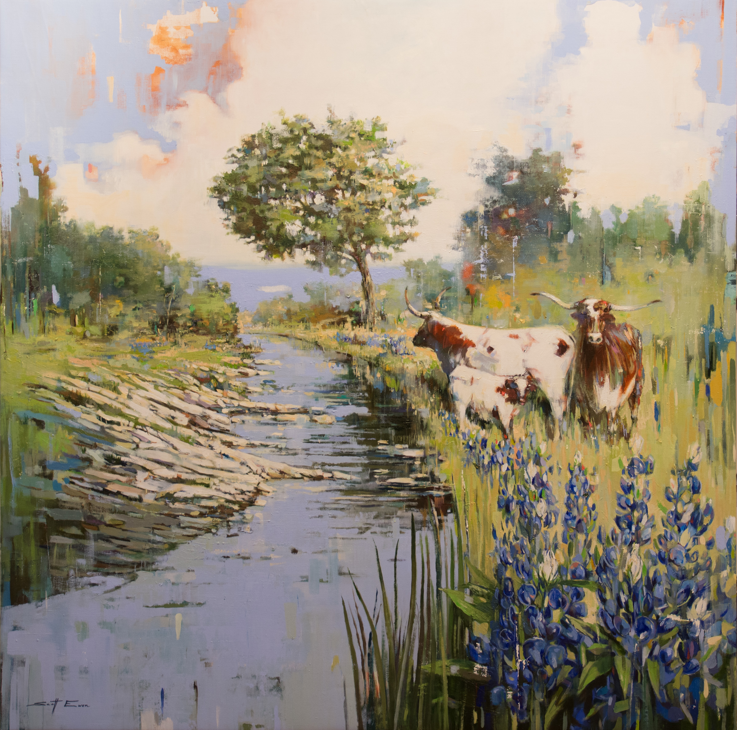 Hill Country Creek with Cows