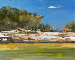 Pedernales River #2