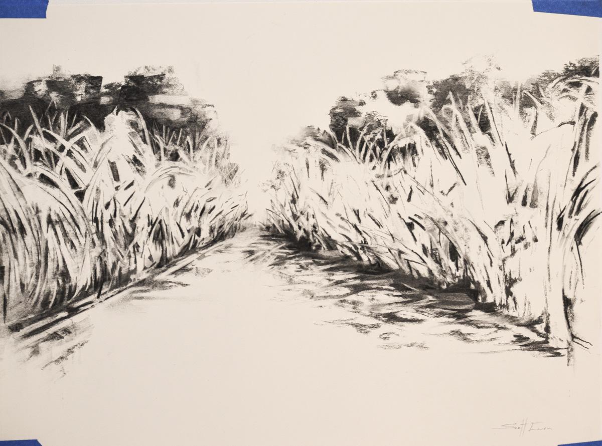 Charcoal Landscape 5