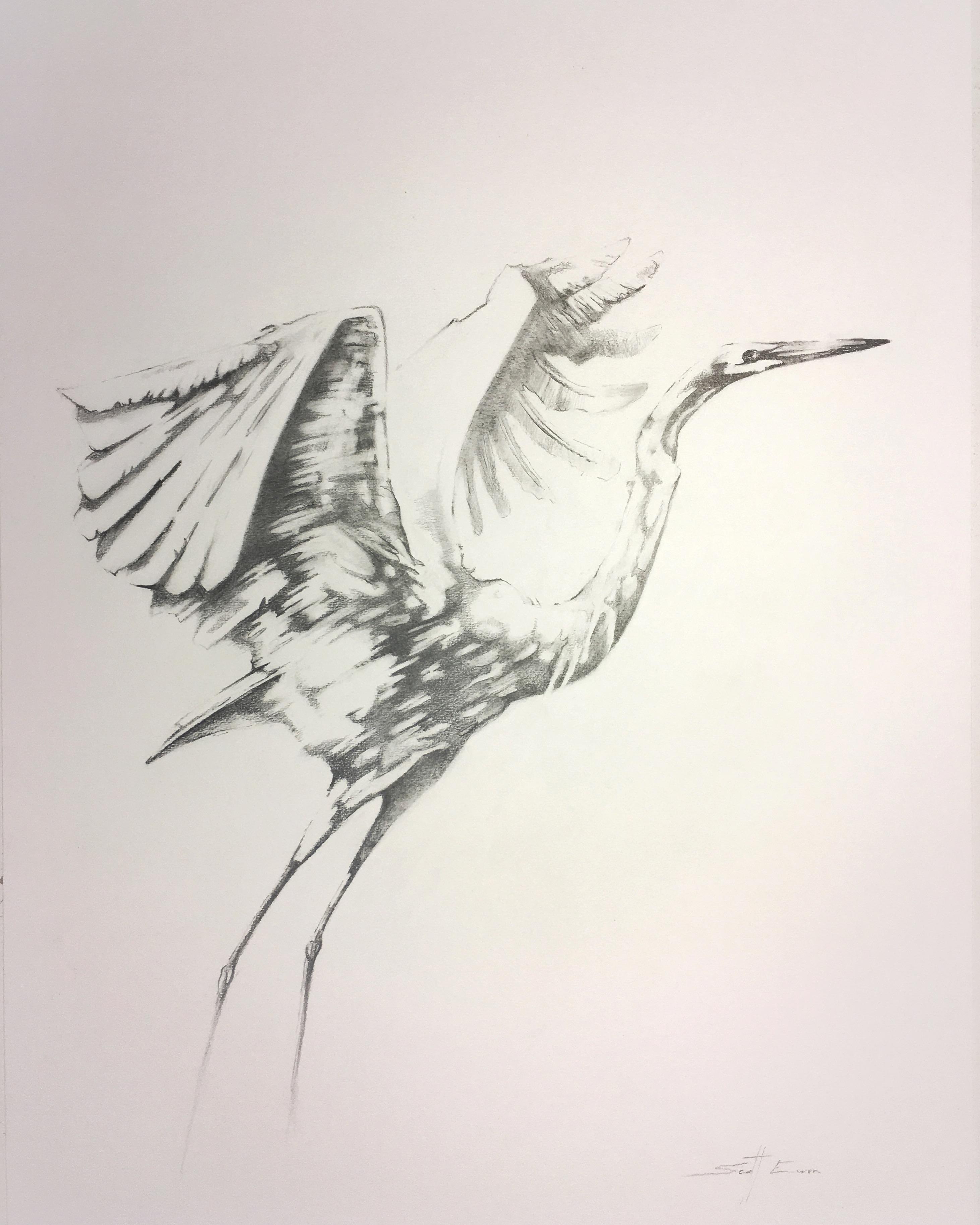 Egret #4