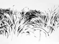 Charcoal Landscape 7