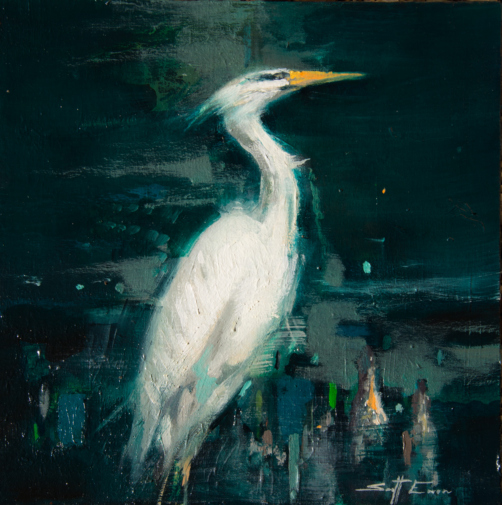 Egret in Cypress