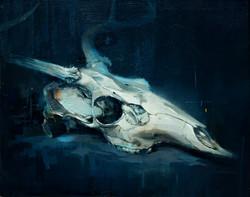 Deer Skull Study 2