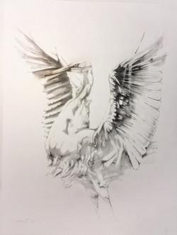 Egret #1  1