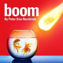 Boom 500x500.jpg