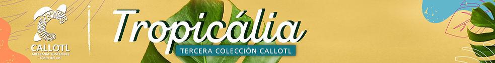 banner catalogo2-06-06.jpg