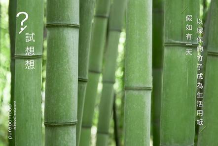 試想想:假如有一天,以環保的竹成為生活用紙?