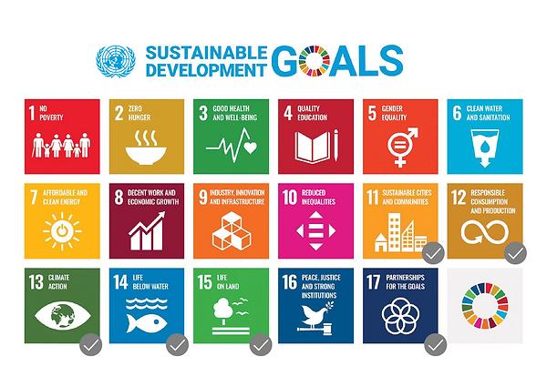 PureBamboo_Website-SDG List-19.png