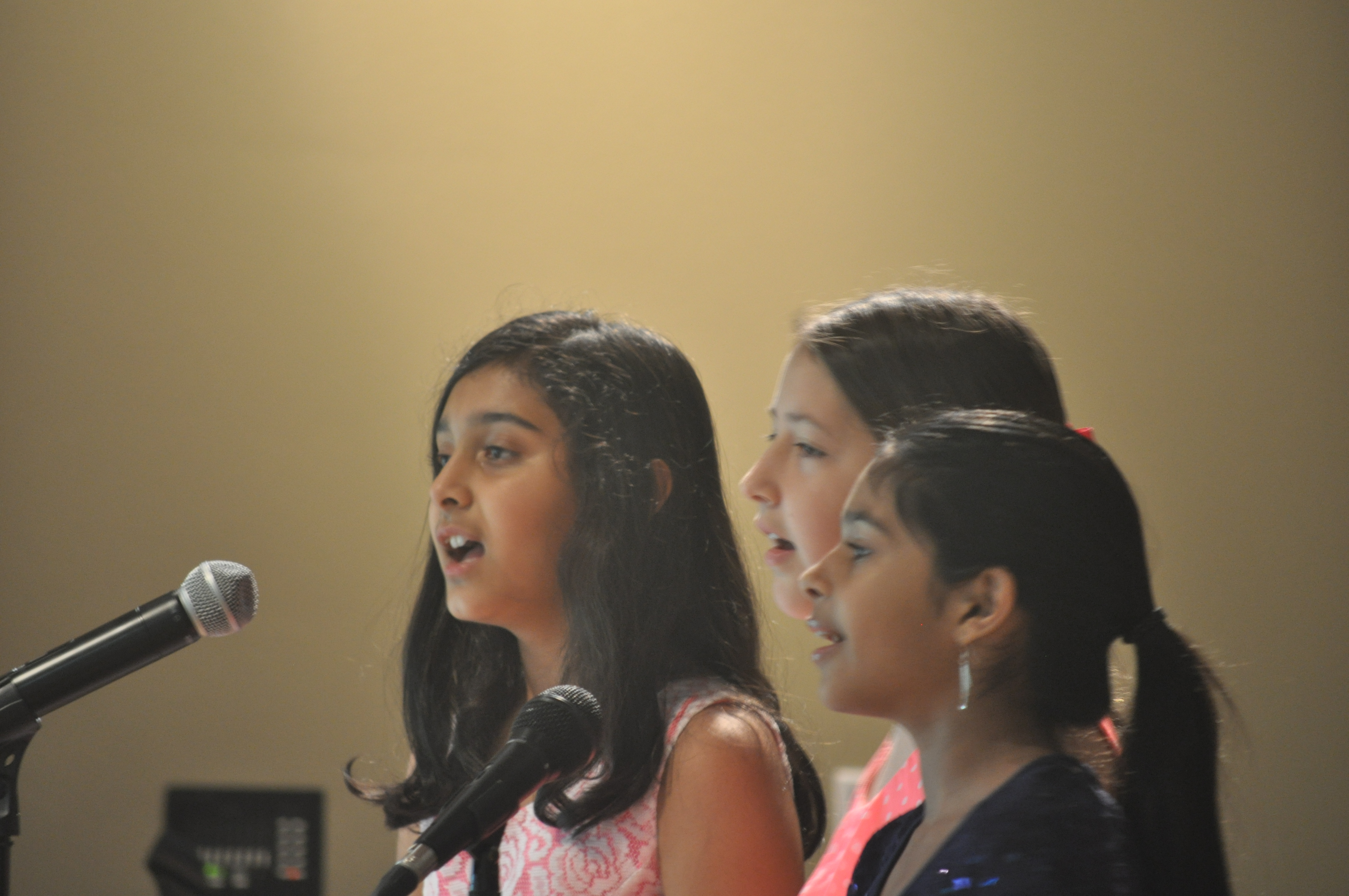 VoiceGroup_April2014Recital.JPG