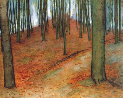 wood-with-beech-trees.jpg