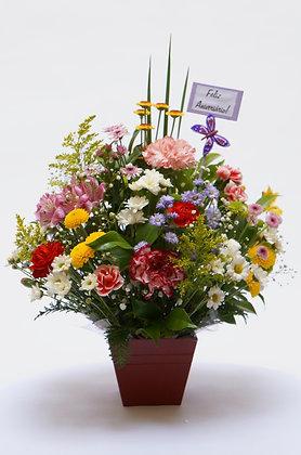 Arranjo de Flores do Campo médio