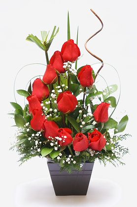 Rosas Meia Lua