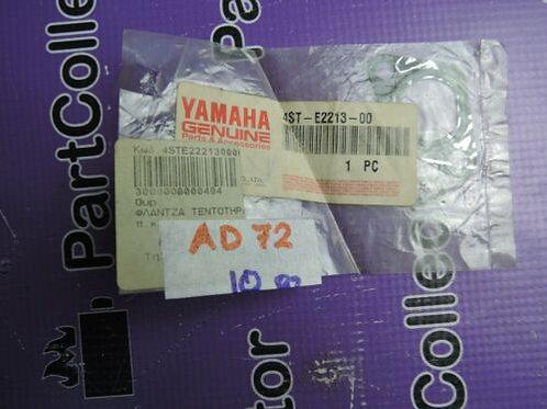 YAMAHA  CAMSHAFT & CHAIN GASKET TENSIONER CASE 4ST-E2213-00