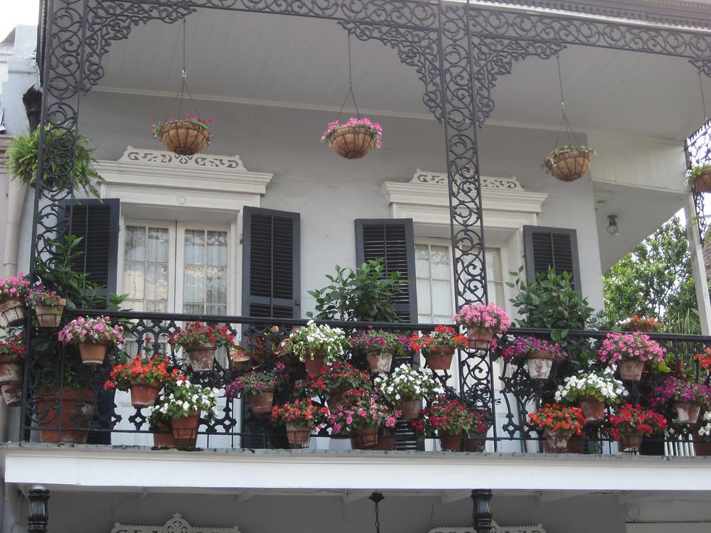 BalconyFlowers.JPG