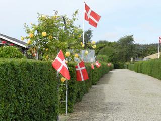 Flagnedtagning, Vildsvinespisning og fest