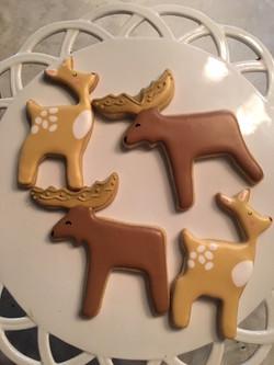 moose_deer