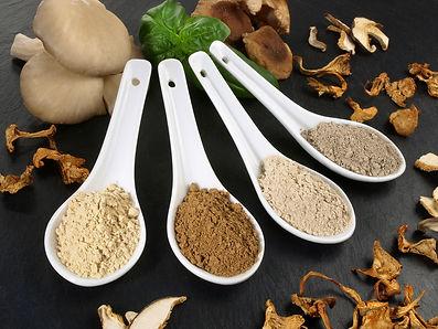 mix verschillende paddenstoelen en poede