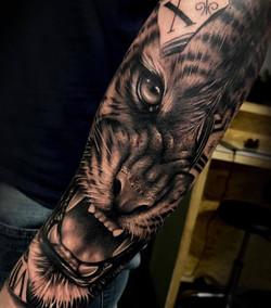 tatouage tête de tigre à toulouse réaliste tatoueur réalisme spécialiste noir et gris