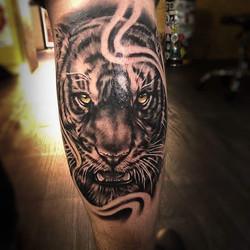 tigre tattoo toulouse realiste