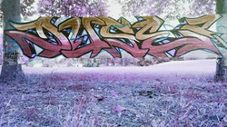 oneduse graffiti ephemere celograff.jpg