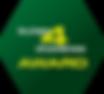 bytes4diabetes_logo.png