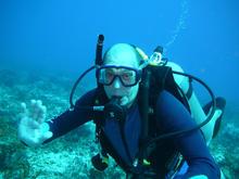 Scuba diving Mexico 2008