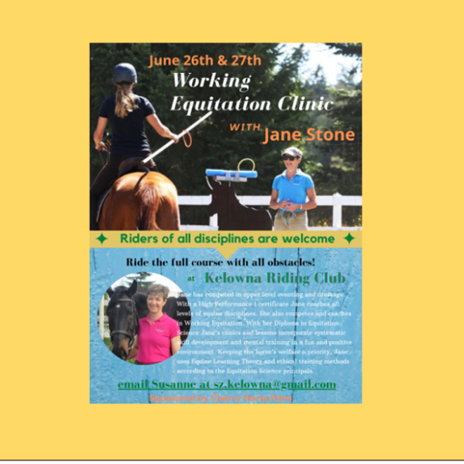 Working Equitation Clinic with Jane Stone