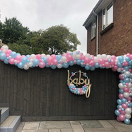 Organic Gender Reveal Arch and Hoop