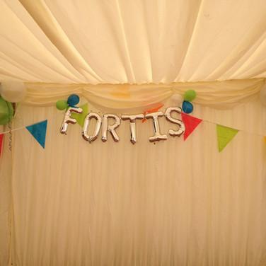 Fortis Foil balloon letters
