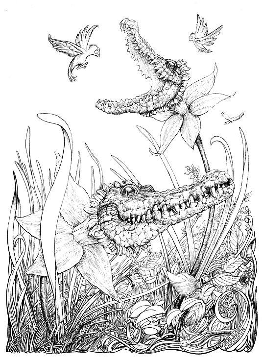 Crocodils01R.jpg