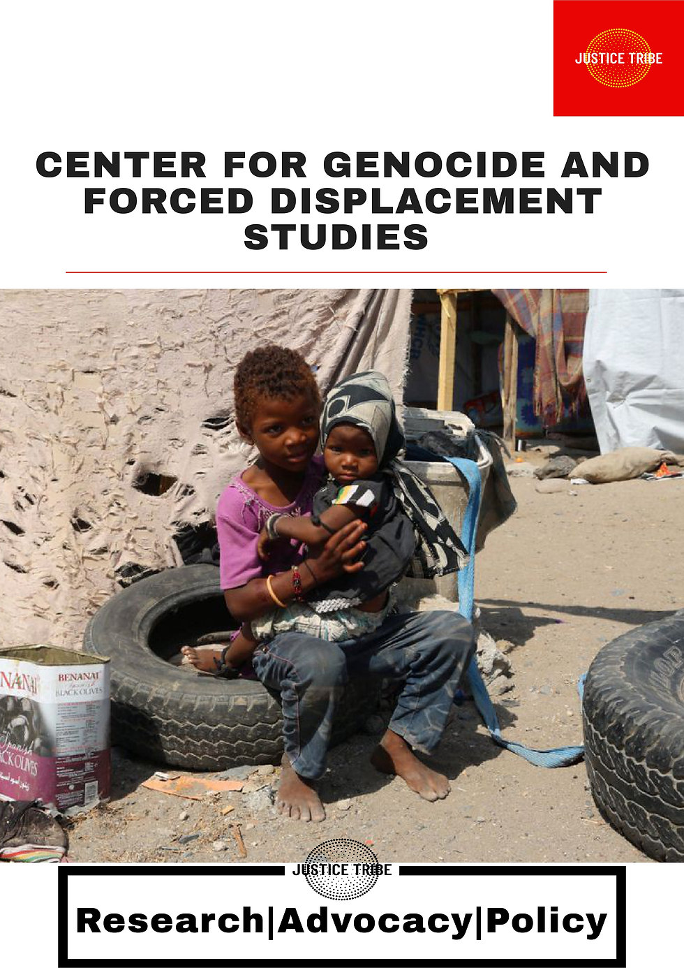 center for genocide and forced displacem